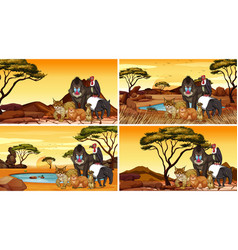 Four scenes with animals in field vector