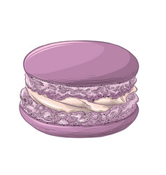 hand drawn sketch of violet macaron in color vector image