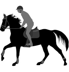 high quality silhouette young man riding horse vector image