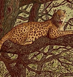 leopard still sm vector image