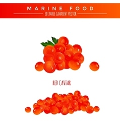 Red Caviar Marine Food vector