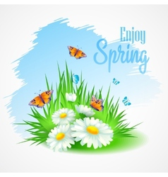 Spring greeting card with daisies vector