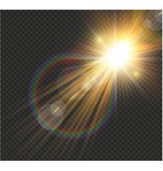 transparent sunlight vector image