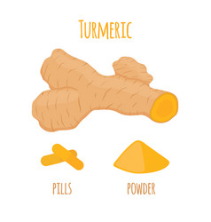 Turmeric rootspice slices powder pills vector
