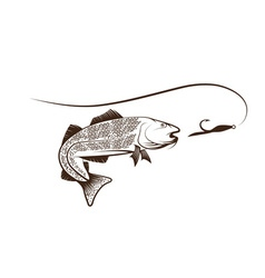 cod fish and lure vector image