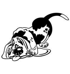 cartoon basset hound black white vector image