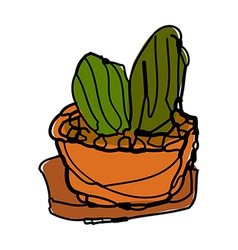 A cactus is placed vector
