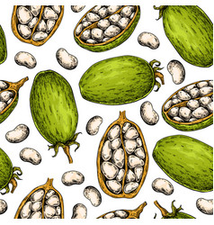 Baobab seamless pattern superfood drawing vector