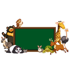 board template with wild animals vector image