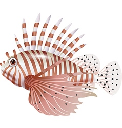 Cartoon scorpion fish isolated on white background vector