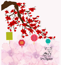 chinese new year with pig cherry blossom vector image