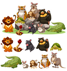 Different types of wild animals vector