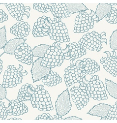 Doodle outline blackberries seamless pattern vector image
