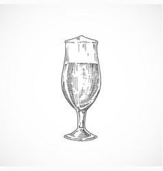 elegant beer glass with foam abstract sketch vector image