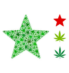 Fireworks star mosaic of cannabis vector