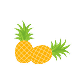 fruit icon pineapple white background image vector image