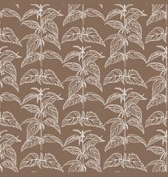 hand drawn dark nettle background vector image