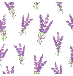 lavender bouquets purple seamless pattern vector image