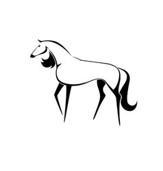 painted horse vector image
