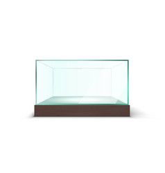 realistic transparent empty glass box showcase on vector image