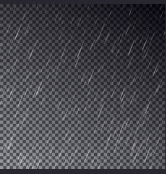 transparent rain drops isolated on dark bac vector image