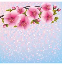 Background with sakura blossom cherry tree vector image vector image
