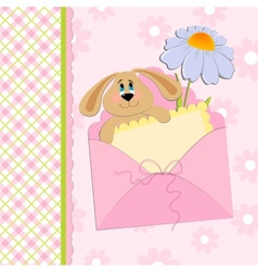 Babys greetings card with rabbit and chamomile vector image vector image