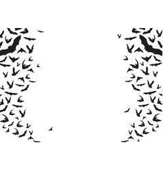 bats flying silhouettes background vector image