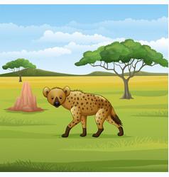 Cartoon hyena in savannah vector