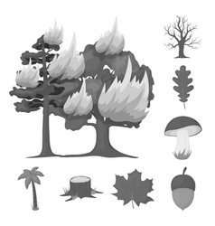 forest and nature monochrome icons in set vector image