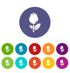 tulip icons set color vector image