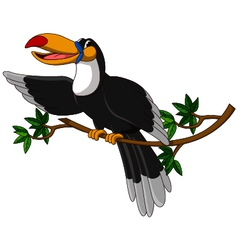 cute toucan sitting on tree vector image vector image