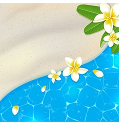 Sandy beach and blue sea water vector image vector image