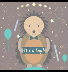 baby boy birth announcement vector image