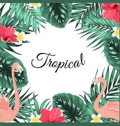 tropical jungle palm leaves flamingo flowers frame vector image