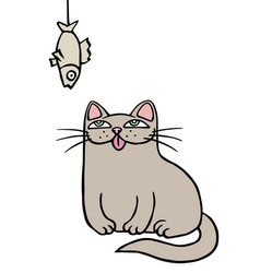 Cute grey cat sits and looks at the hanging dried vector