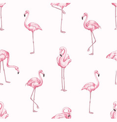 pink flamingos seamless pattern beautiful vector image
