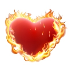 Heart in flame isolated on white EPS 10 vector image vector image