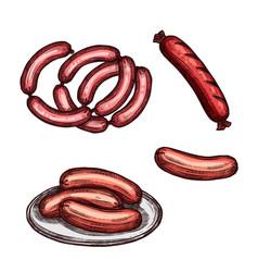grilled meat sausage and frankfurter sketch vector image
