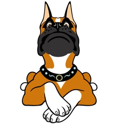 cartoon boxer vector image vector image