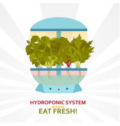 hydroponic system for indoor gardening vector image