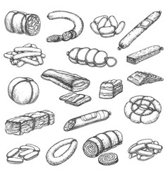 butcher shop meat delicatessen sausages sketch vector image