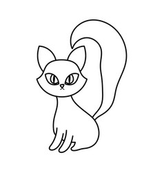 cat sitting with big tail line style vector image