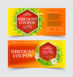 red discount coupon vector image