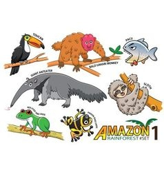 set cute cartoon animals and birds in amazo vector image