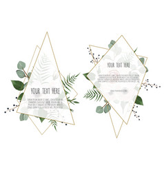Set of card with leaves flowers and geometrical vector
