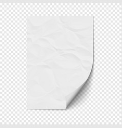 white page curl on empty sheet crumpled paper vector image