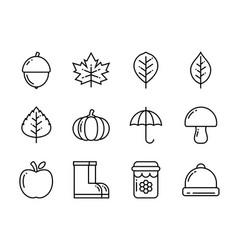 autumn icon set thin line style symbols vector image