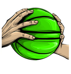 hand and basketball isolated on white vector image