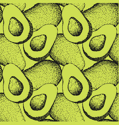 seamless pattern with hand drawn avocado vector image